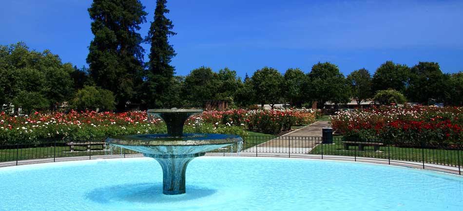 San Jose Municipal Rose Garden